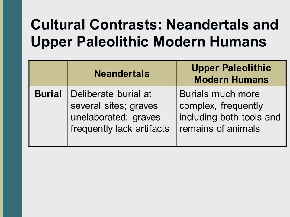 Cultural Contrasts: Neandertals and Upper Paleolithic Modern Humans Neandertals Upper Paleolithic Modern Humans BurialDeliberate burial at several sites; graves unelaborated; graves frequently lack artifacts Burials much more complex, frequently including both tools and remains of animals