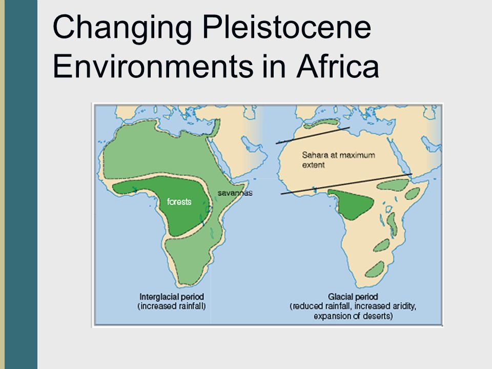 Changing Pleistocene Environments in Africa