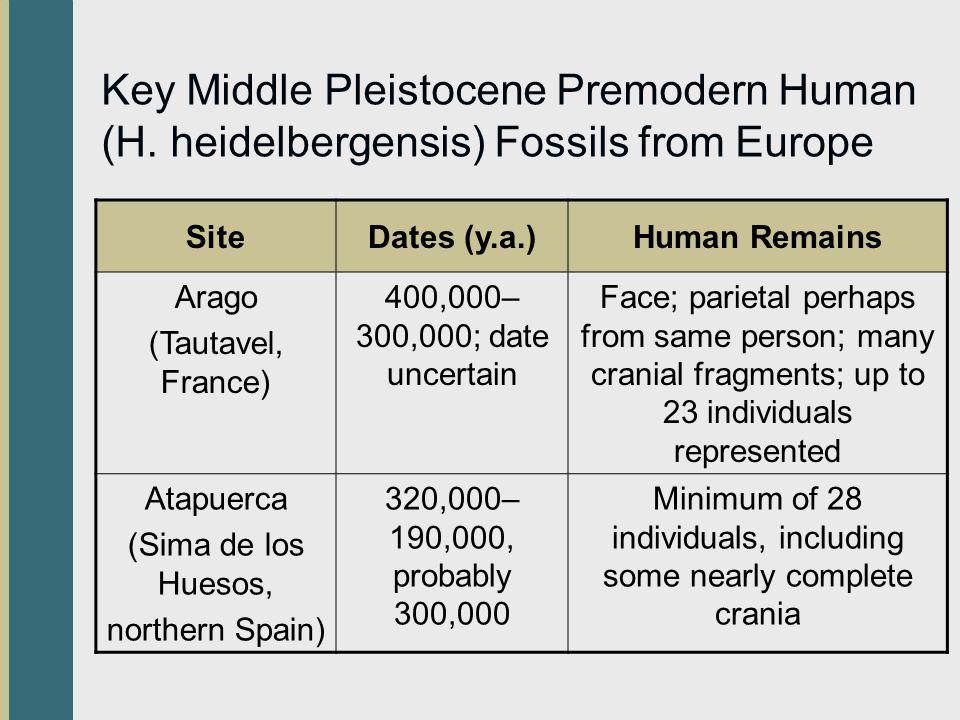Key Middle Pleistocene Premodern Human (H.