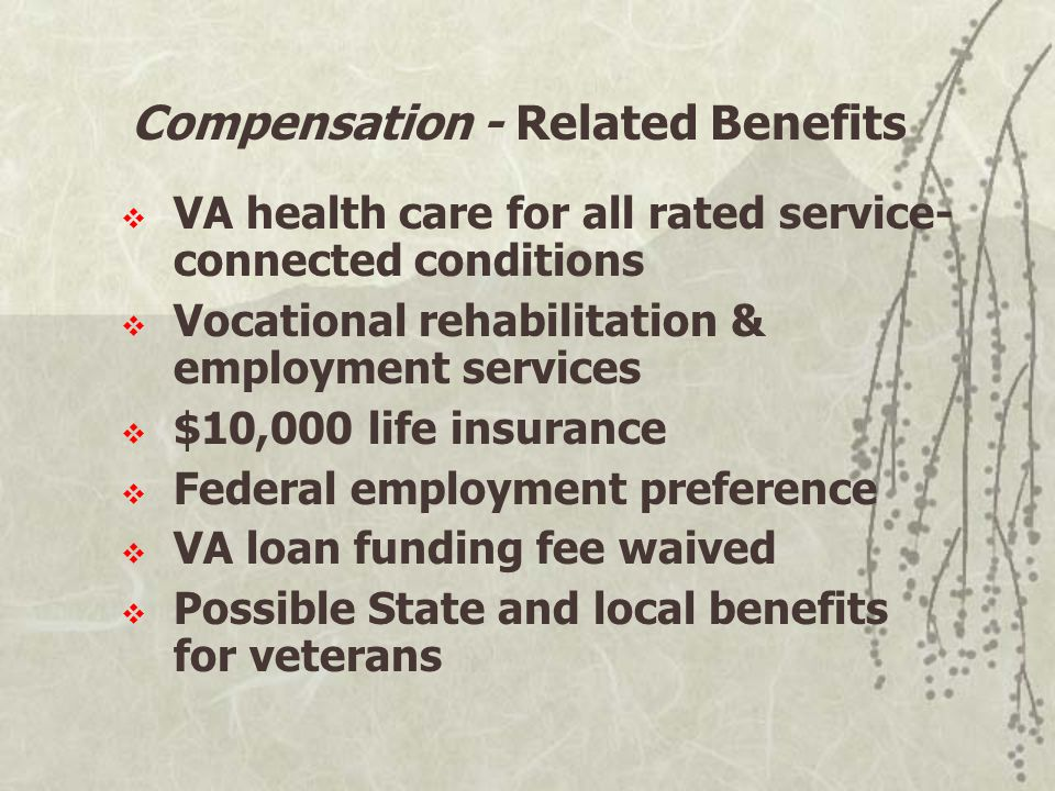 VA health care for all rated service- connected conditions  Vocational rehabilitation & employment services  $10,000 life insurance  Federal employment preference  VA loan funding fee waived  Possible State and local benefits for veterans Compensation - Related Benefits
