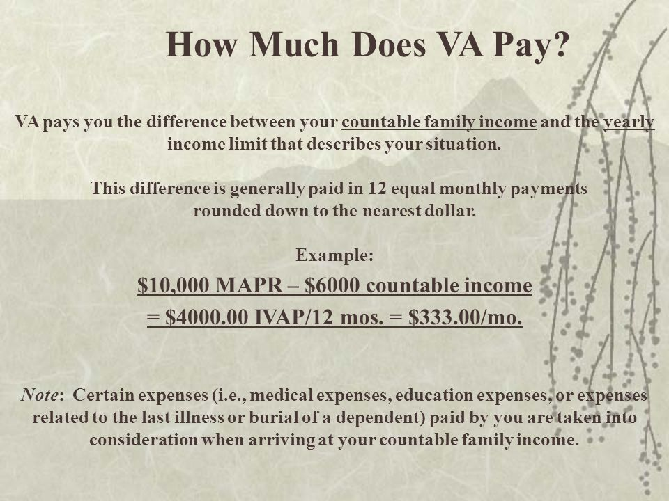 How Much Does VA Pay.