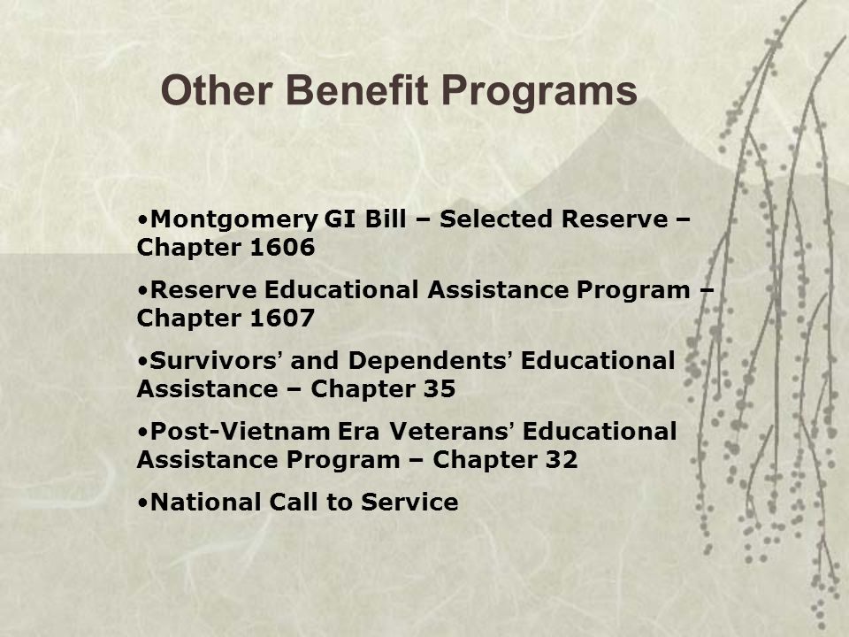 Other Benefit Programs Montgomery GI Bill – Selected Reserve – Chapter 1606 Reserve Educational Assistance Program – Chapter 1607 Survivors ' and Dependents ' Educational Assistance – Chapter 35 Post-Vietnam Era Veterans ' Educational Assistance Program – Chapter 32 National Call to Service