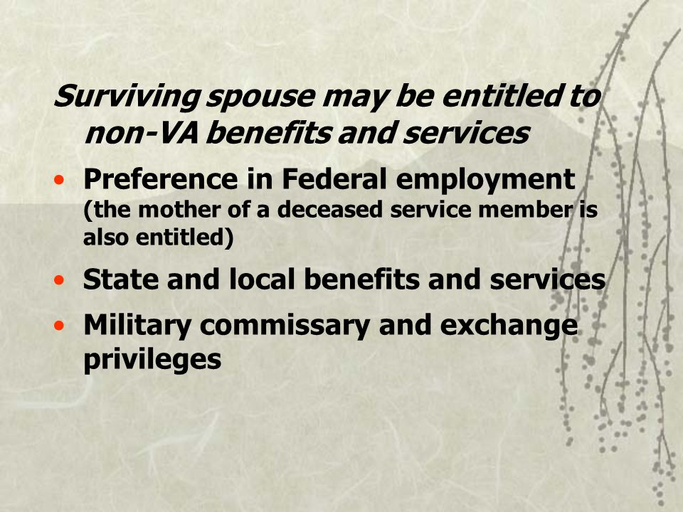 Surviving spouse may be entitled to non-VA benefits and services Preference in Federal employment (the mother of a deceased service member is also entitled) State and local benefits and services Military commissary and exchange privileges