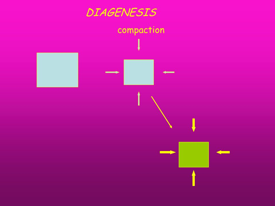 compaction DIAGENESIS