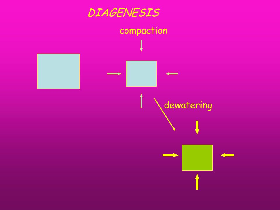 compaction dewatering DIAGENESIS