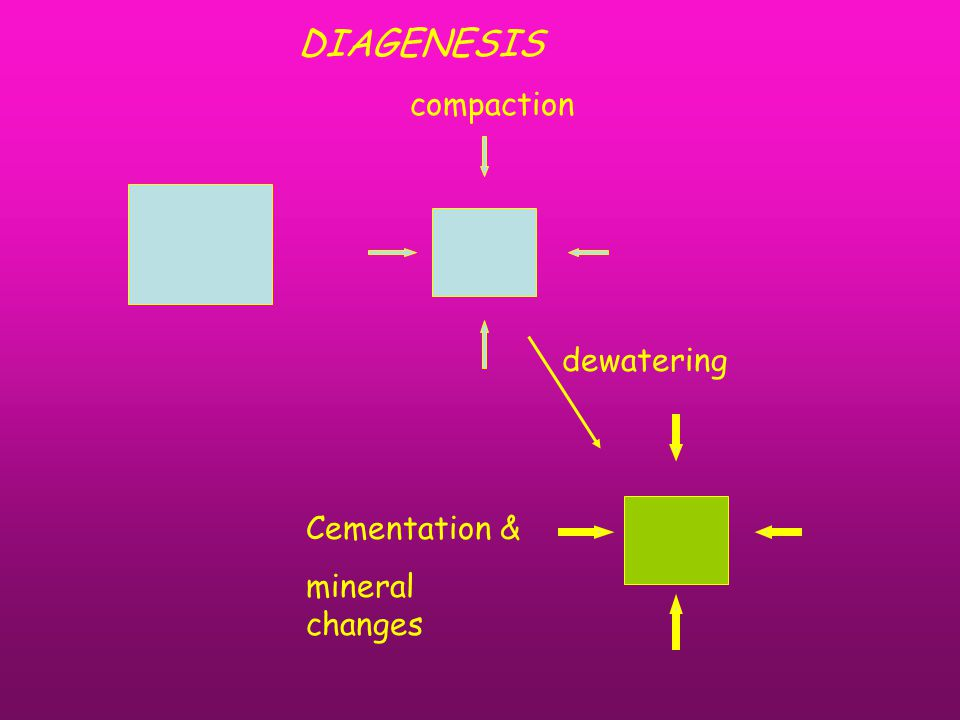 compaction dewatering Cementation & mineral changes DIAGENESIS