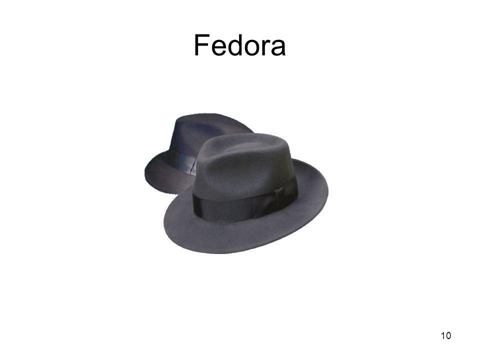 10 Fedora