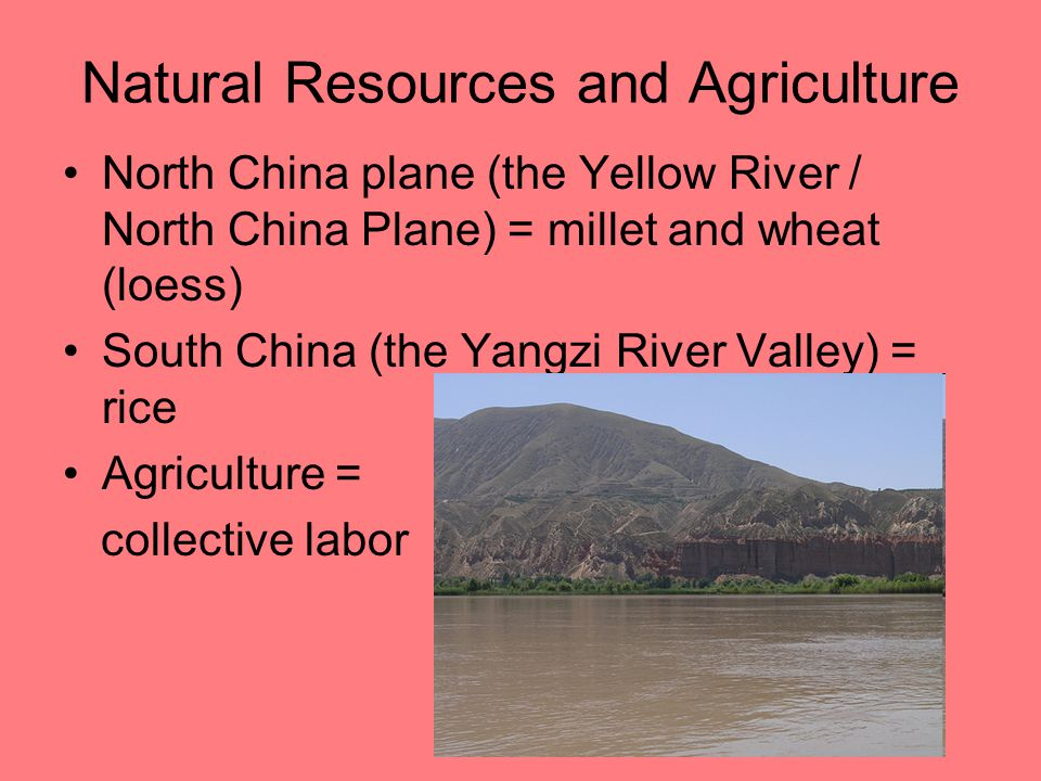 Natural Resources and Agriculture North China plane (the Yellow River / North China Plane) = millet and wheat (loess) South China (the Yangzi River Va