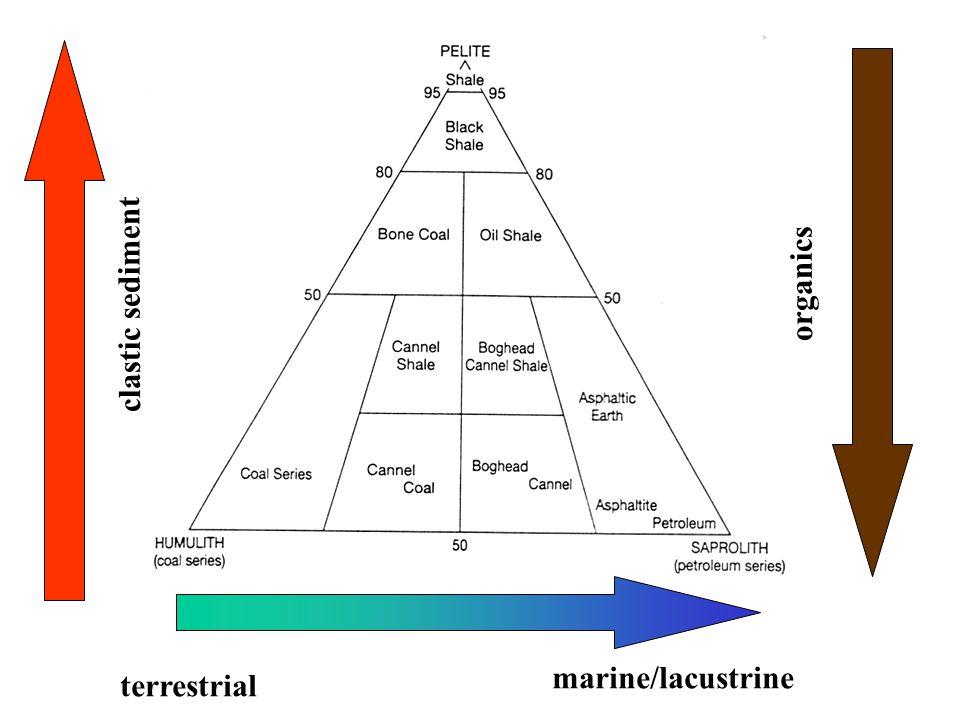 clastic sediment organics terrestrial marine/lacustrine