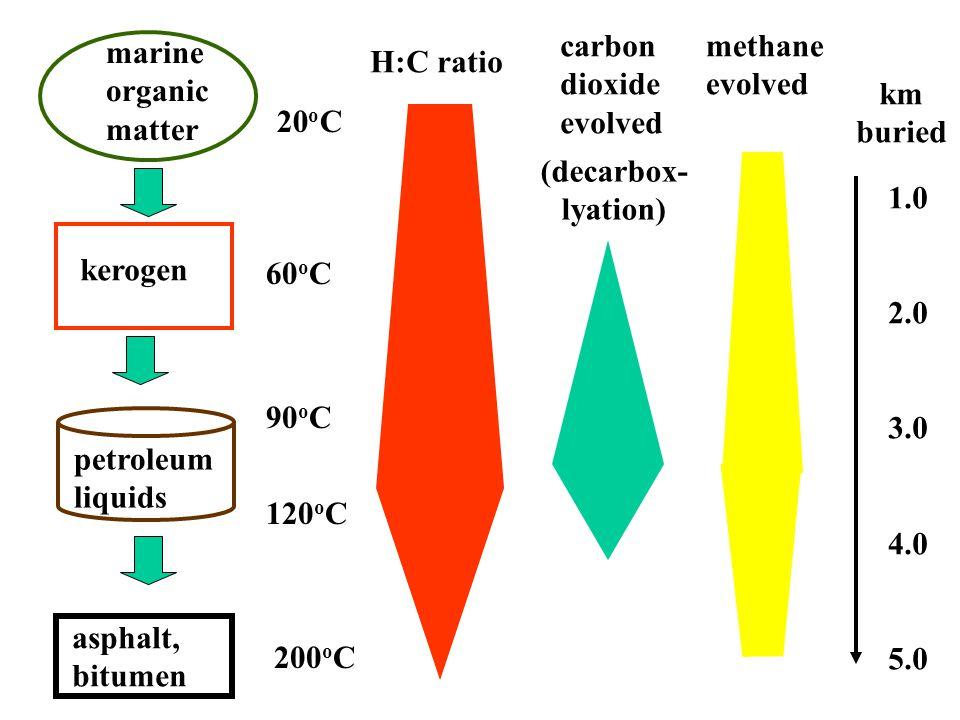 marine organic matter kerogen petroleum liquids methane evolved 120 o C (decarbox- lyation) asphalt, bitumen H:C ratio 60 o C 20 o C 90 o C 200 o C carbon dioxide evolved km buried 1.0 2.0 3.0 4.0 5.0