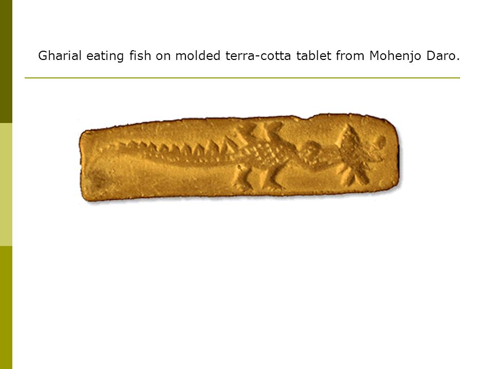 Gharial eating fish on molded terra-cotta tablet from Mohenjo Daro.