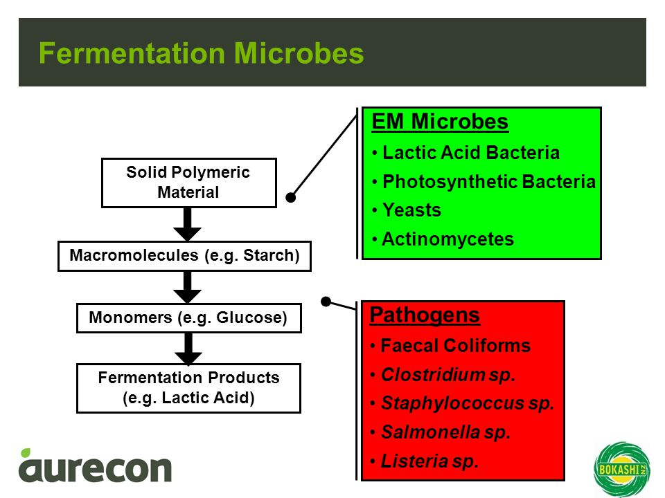 Fermentation Microbes Solid Polymeric Material Macromolecules (e.g.