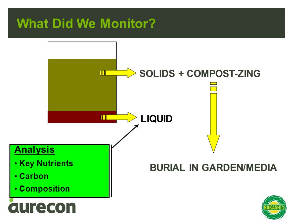 What Did We Monitor.