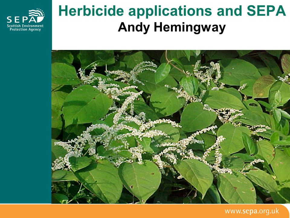 Herbicide applications and SEPA Andy Hemingway