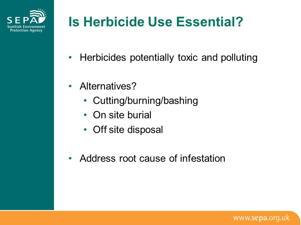 Is Herbicide Use Essential. Herbicides potentially toxic and polluting Alternatives.