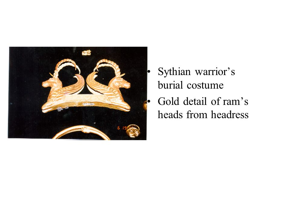 Sythian warrior's burial costume Gold detail of ram's heads from headress