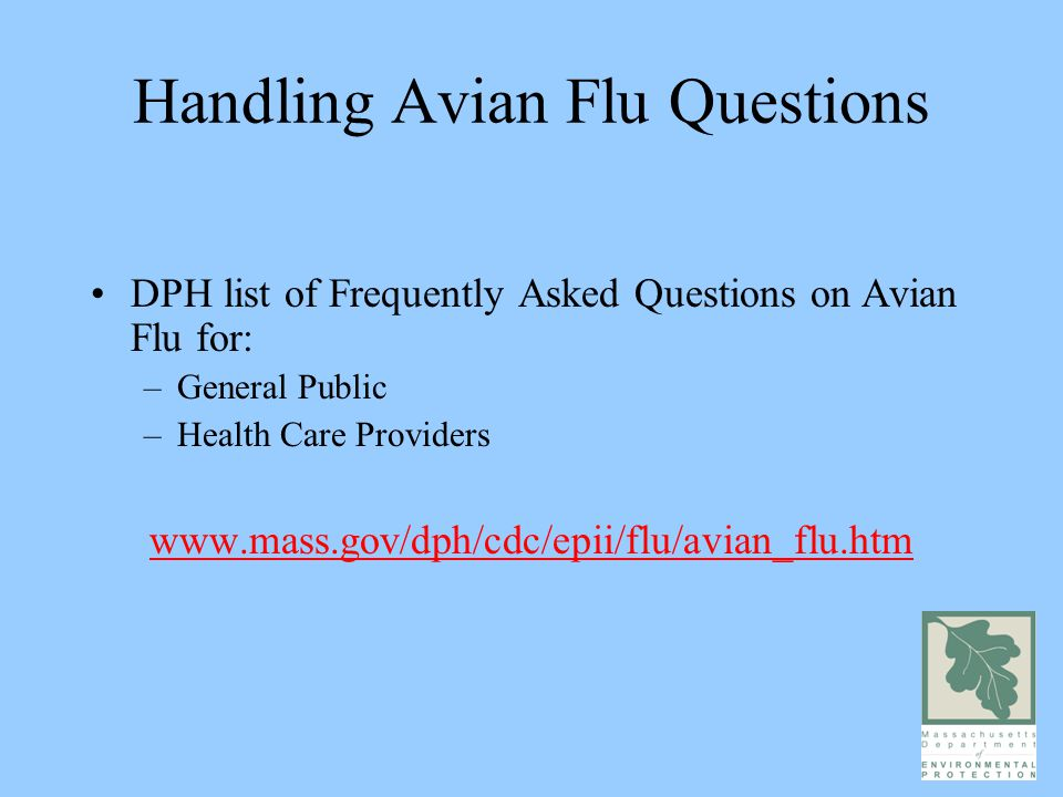 Handling Avian Flu Questions DPH list of Frequently Asked Questions on Avian Flu for: –General Public –Health Care Providers www.mass.gov/dph/cdc/epii/flu/avian_flu.htm