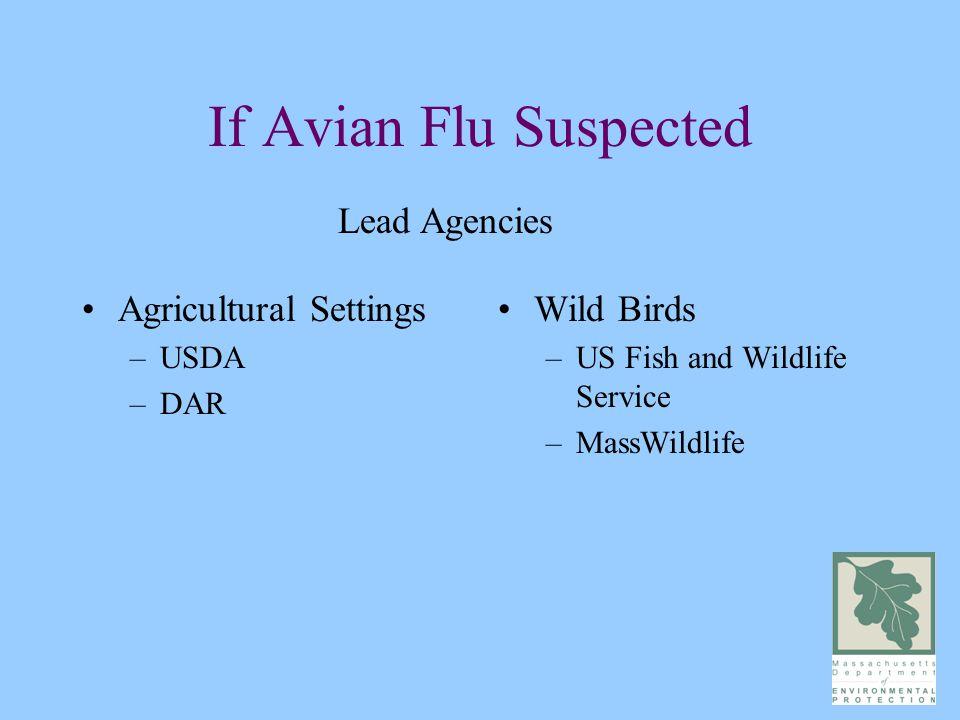 If Avian Flu Suspected Agricultural Settings –USDA –DAR Wild Birds –US Fish and Wildlife Service –MassWildlife Lead Agencies