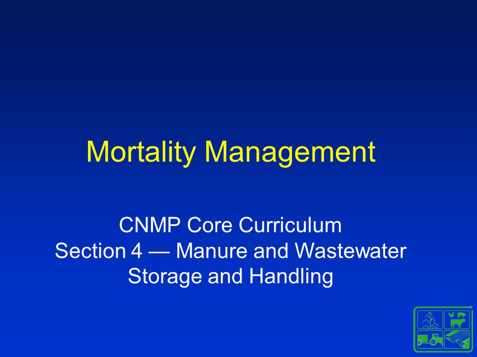 Mortality Management Daily losses –Plan –Structure Catastrophic losses –Plan