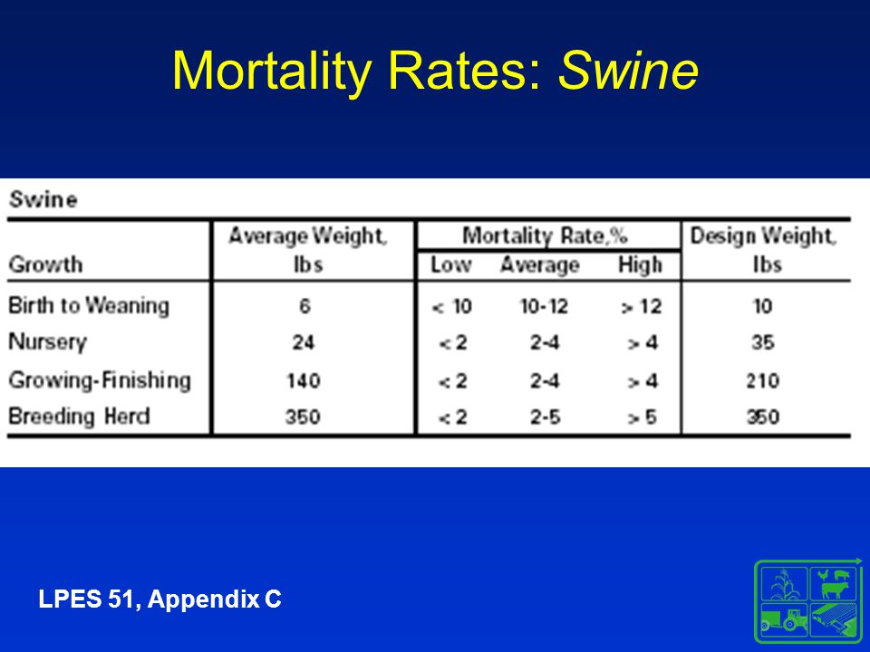 Mortality Rates: Swine