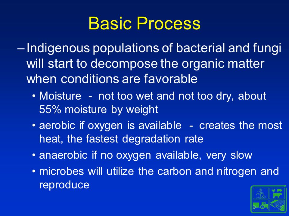 Basic Process –Indigenous populations of bacterial and fungi will start to decompose the organic matter when conditions are favorable Moisture - not too wet and not too dry, about 55% moisture by weight aerobic if oxygen is available - creates the most heat, the fastest degradation rate anaerobic if no oxygen available, very slow microbes will utilize the carbon and nitrogen and reproduce