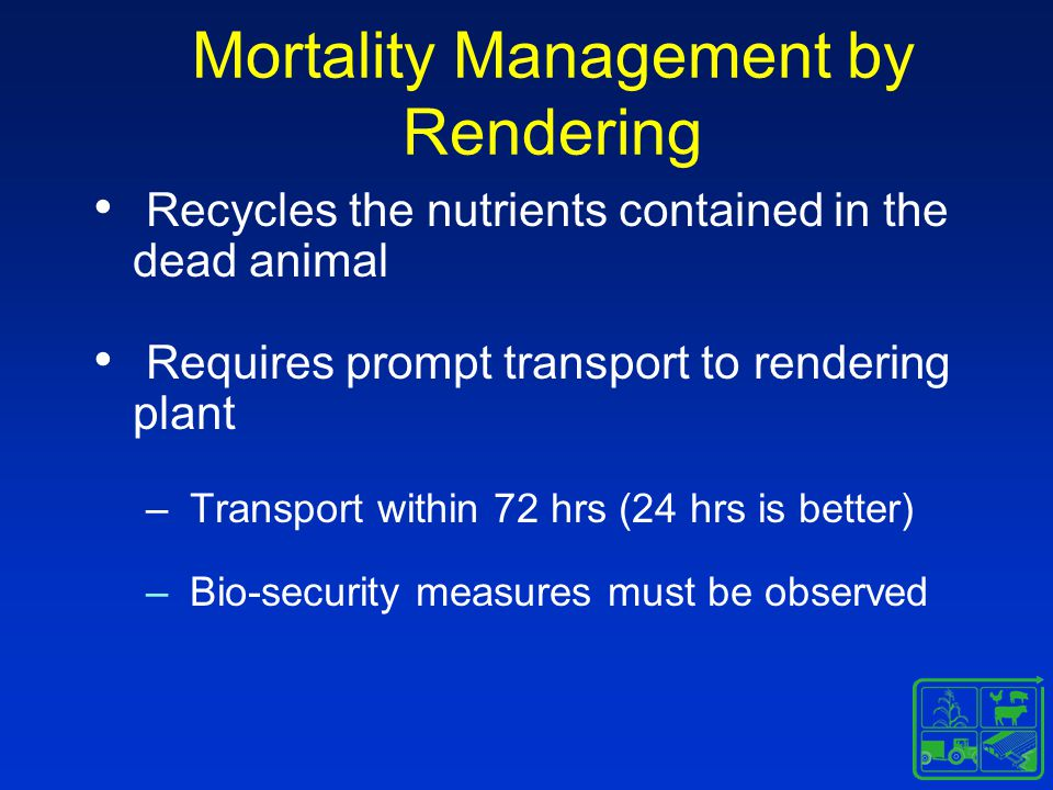 Mortality Management by Rendering Recycles the nutrients contained in the dead animal Requires prompt transport to rendering plant – Transport within 72 hrs (24 hrs is better) – Bio-security measures must be observed