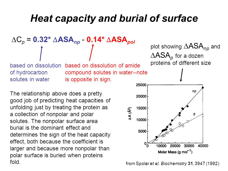 Heat capacity and burial of surface  C p = 0.32*  ASA np - 0.14*  ASA pol based on dissolution of amide compound solutes in water--note is opposite in sign.