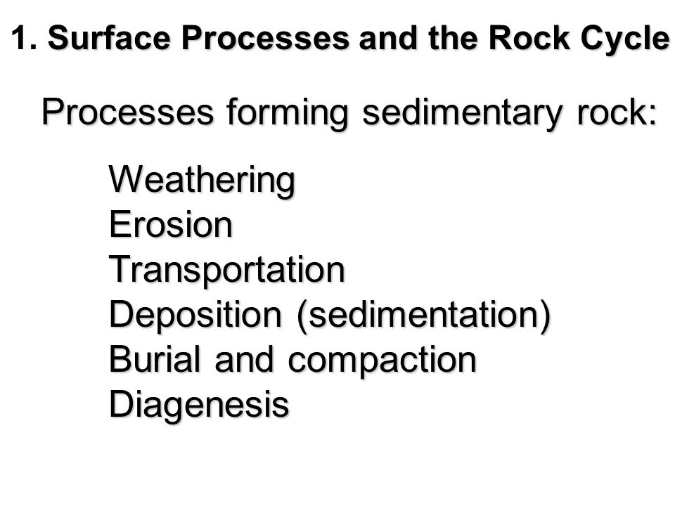 Thought questions for this chapter From the base upward, a bedding sequence begins with a bioclastic limestone, passes upward into a dense carbonate rock made of carbonate-cementing organisms, and ends with beds of dolostone.