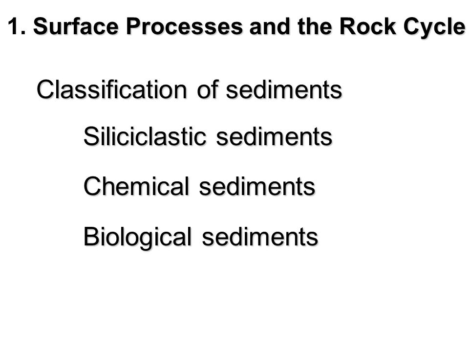 Thought questions for this chapter What role do organisms play in the origin of some types of limestone.