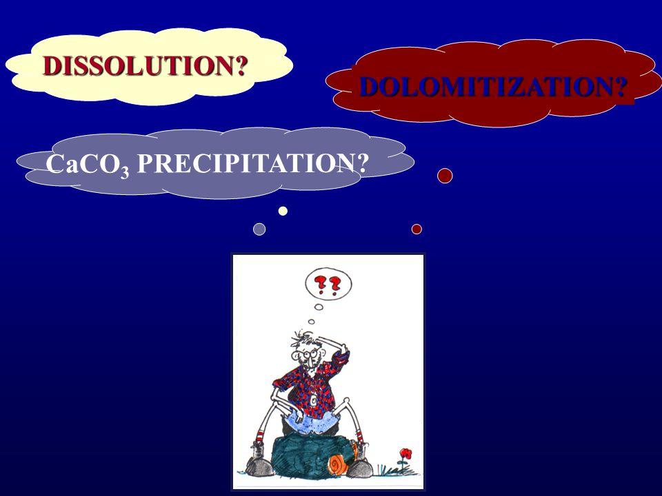 DISSOLUTION DOLOMITIZATION CaCO 3 PRECIPITATION
