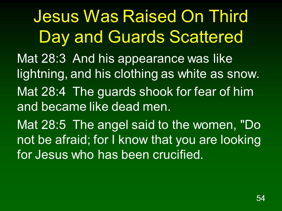 54 Jesus Was Raised On Third Day and Guards Scattered Mat 28:3 And his appearance was like lightning, and his clothing as white as snow.