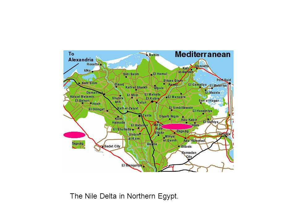 The Nile Delta in Northern Egypt.