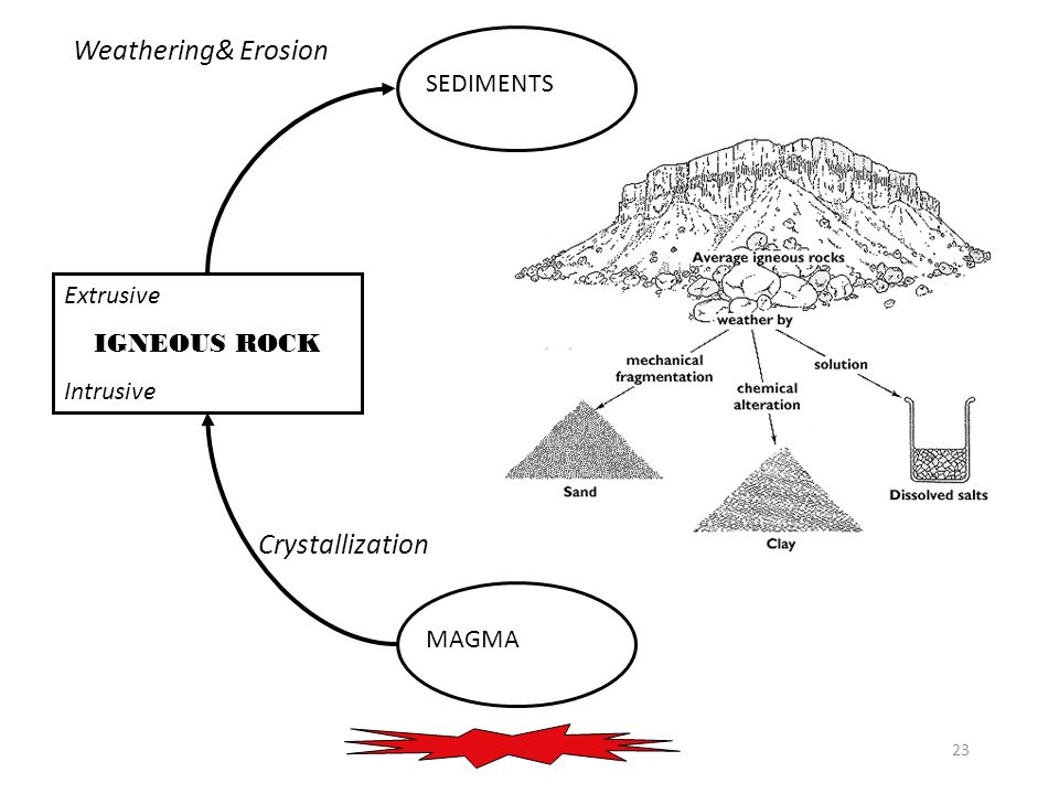 23 MAGMA Extrusive IGNEOUS ROCK Intrusive SEDIMENT Crystallization SEDIMENTS Weathering& Erosion