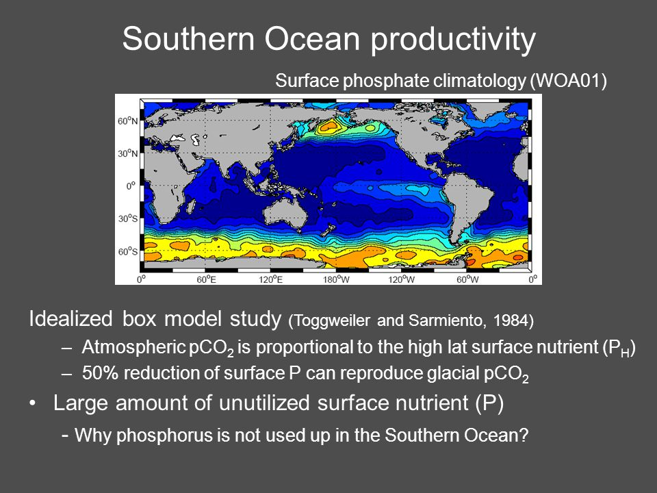 Southern Ocean productivity Idealized box model study (Toggweiler and Sarmiento, 1984) –Atmospheric pCO 2 is proportional to the high lat surface nutrient (P H ) –50% reduction of surface P can reproduce glacial pCO 2 Large amount of unutilized surface nutrient (P) - Why phosphorus is not used up in the Southern Ocean.