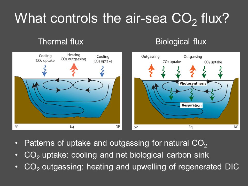 What controls the air-sea CO 2 flux.