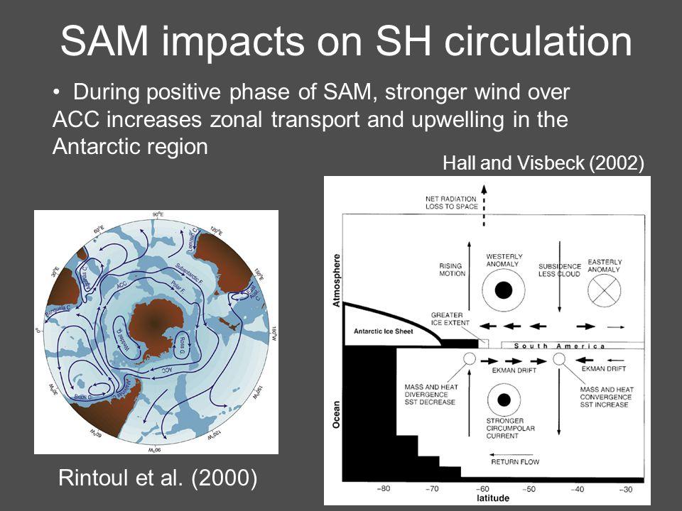 SAM impacts on SH circulation Rintoul et al.