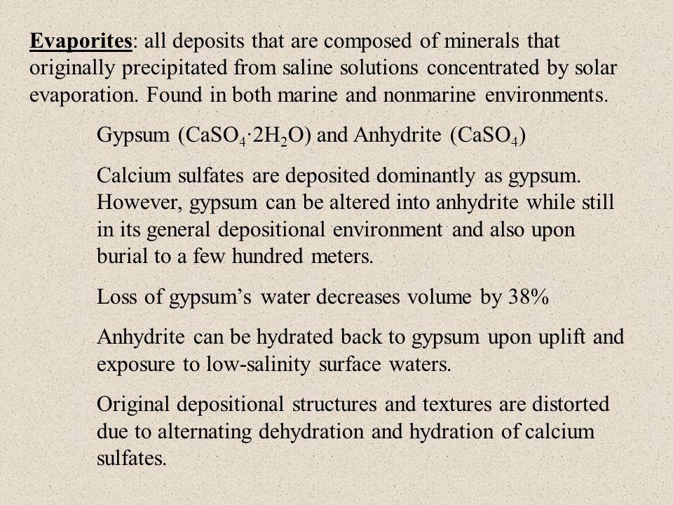 Origin of phosphorites Inhibition of organic mater decay due to reducing conditions at ocean floor.