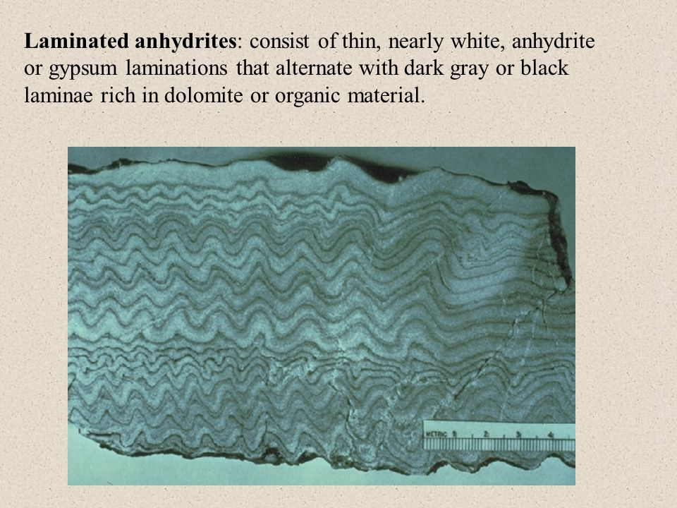 Kinds of organic matter in sedimentary rocks: Humus: plant organic matter that accumulates in soils Peat: humic organic matter that accumulates in water where stagnant anaerobic conditions prevent total oxidation and bacterial decay.