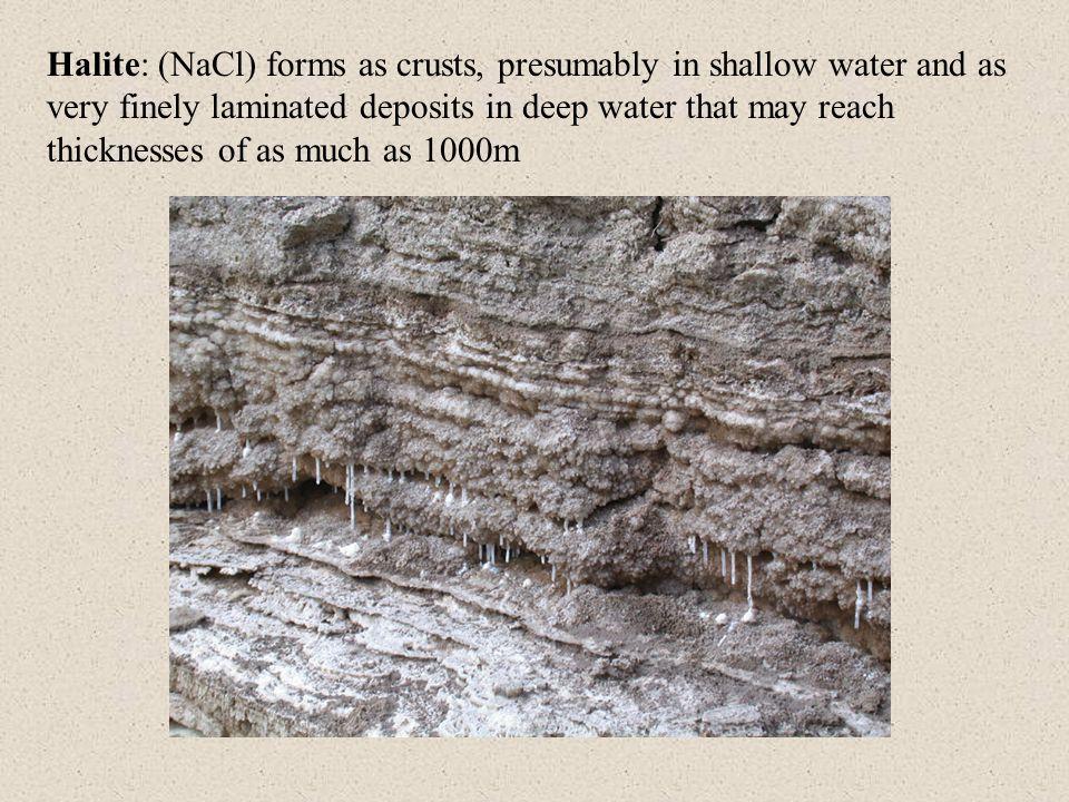 Classification of carbonaceous sedimentary rocks: (Coals, oil shales and asphaltic substances) Coals: carbonaceous sediment composed most often of the remains of spores, algae, fine plant debris and noncarbonaceous ash.