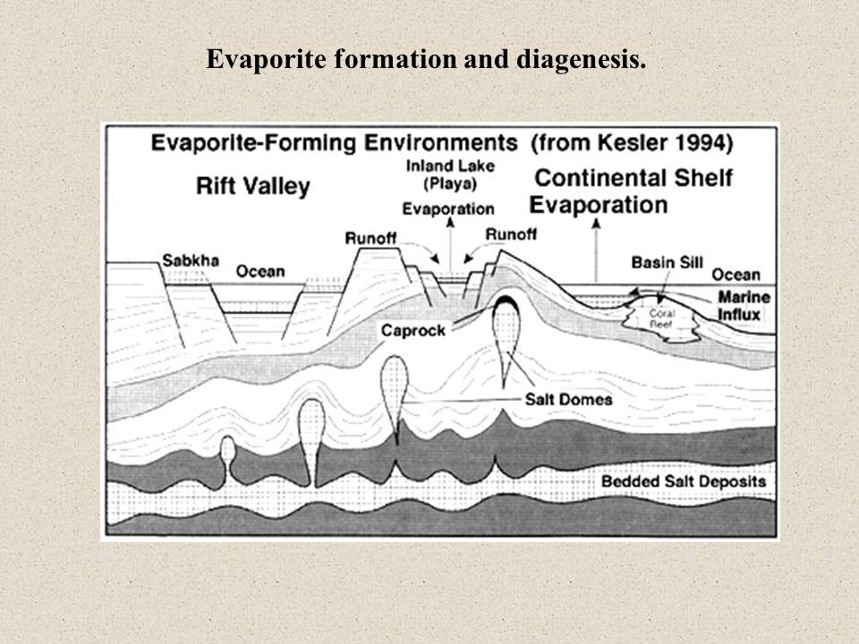 Evaporation Sequence Volume of water remainingEvaporite Precipitated 50%Minor quantities of carbonate minerals form 20%Gypsum precipitates 10%Halite precipitates 5%Mg & K salts precipitate