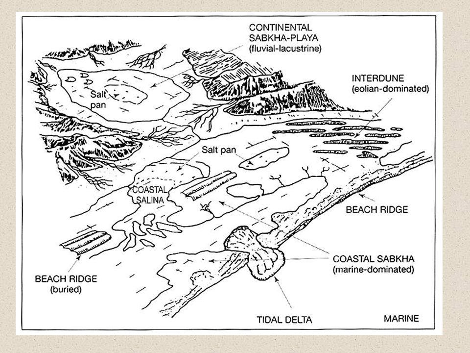 Sedimentary Phosphorites