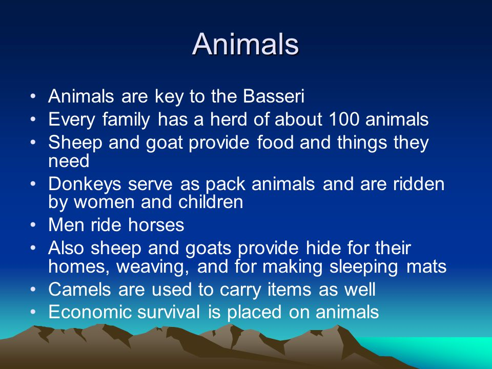 Animals Animals are key to the Basseri Every family has a herd of about 100 animals Sheep and goat provide food and things they need Donkeys serve as