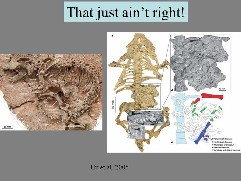 Hu et al, 2005 That just ain't right!