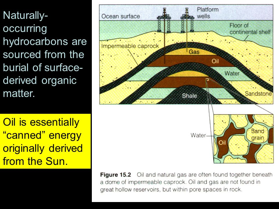 Oil is essentially canned energy originally derived from the Sun.