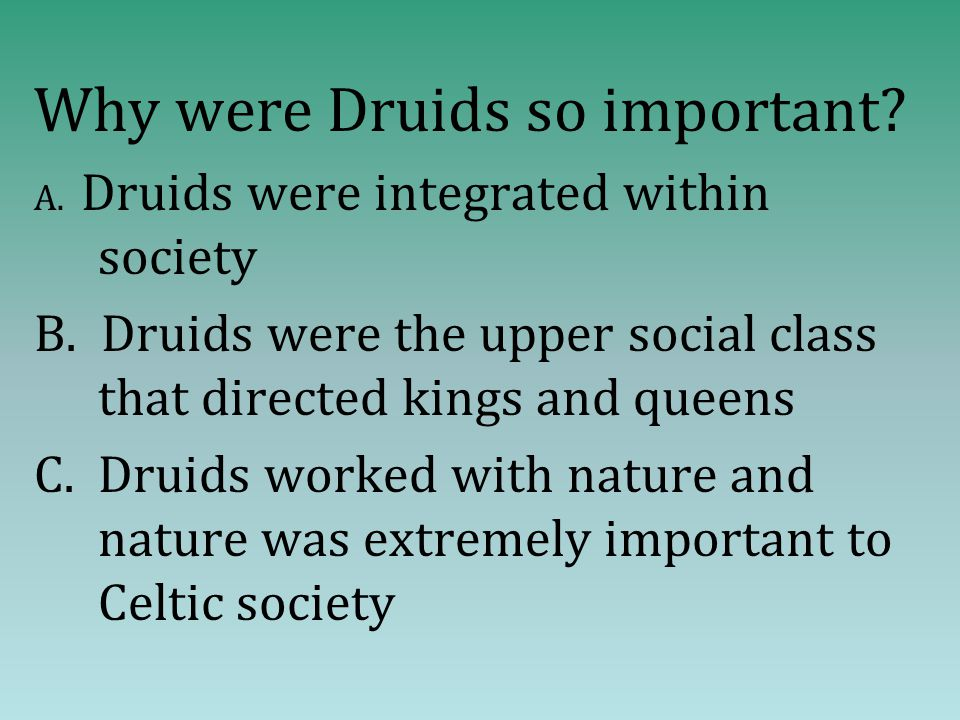 Why were Druids so important. A. Druids were integrated within society B.
