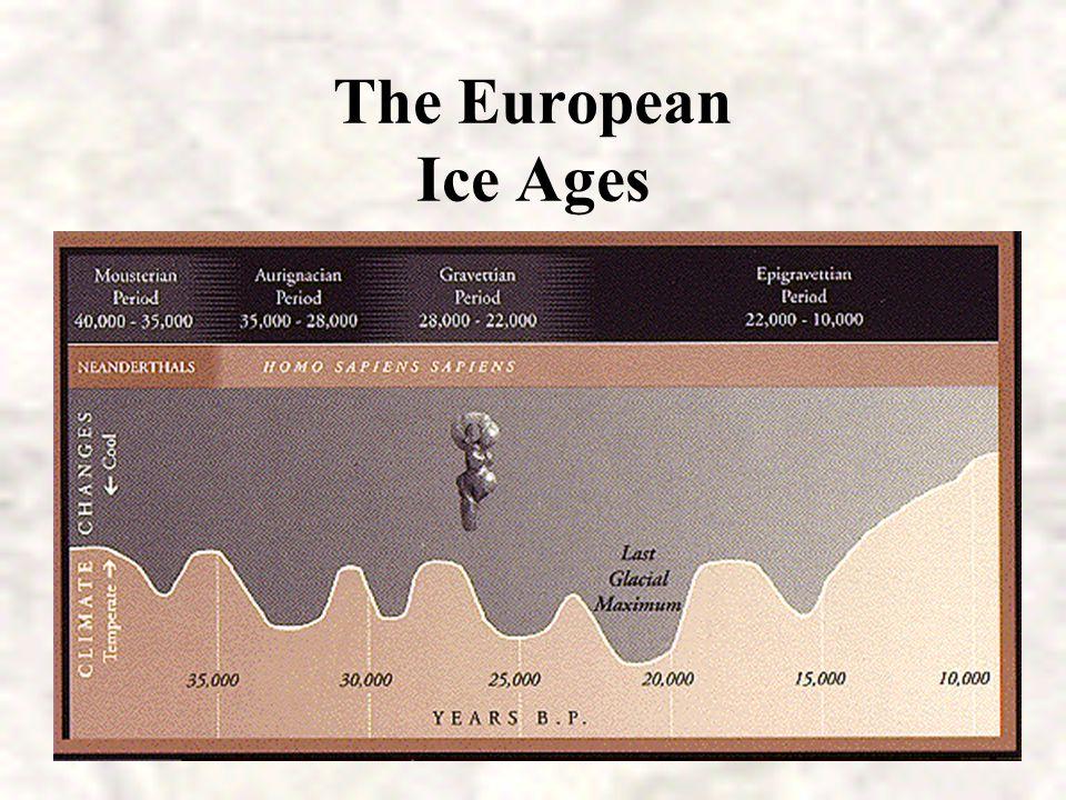 Neandertal modern human Continuing controversy over relationship to Homo sapiens: Homo sapiens neandertalis or Homo neandertalis? Genetic evidence ind
