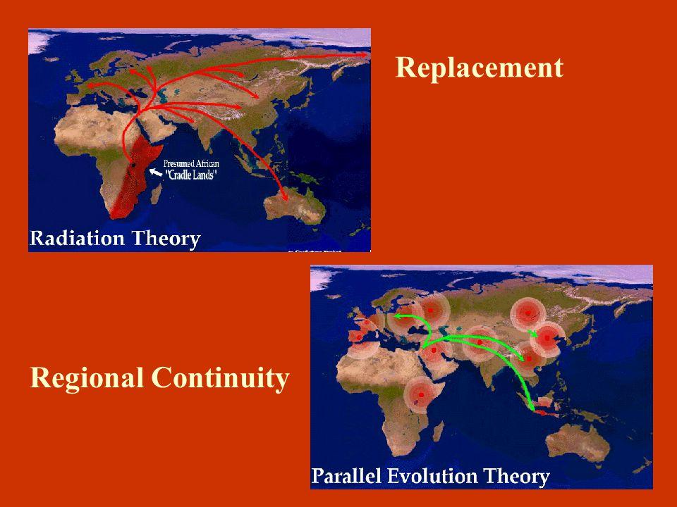 Models of Homo Sapiens Sapiens Evolution