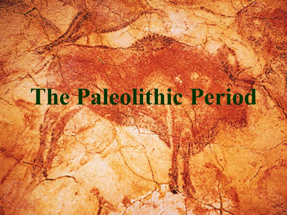 Major Periods of Human Culture bp=before present ¤PALEOLITHIC: Old Stone Age ¤Lower paleolithic 2.5 million-75,000 bp ¤Middle paleolithic 75,000-35,00