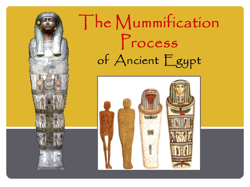 Daily Life in Ancient Egypt ~ Ankh ~ ~ Ankh ~ Ancient Egyptian symbol for Life .
