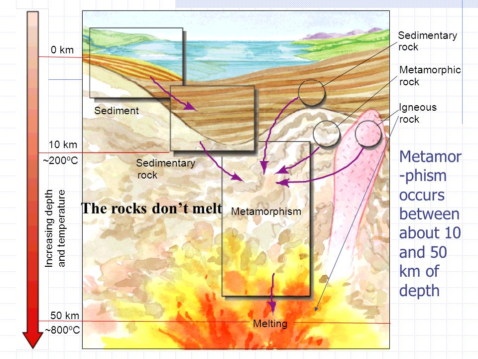 0 km Sedimentary rock Metamorphic rock Igneous rock 50 km 10 km ~200ºC ~800ºC Increasing depth and temperature Melting Metamorphism Sedimentary rock Sediment Metamor -phism occurs between about 10 and 50 km of depth The rocks don't melt